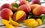 Mango-Beloved Fruit