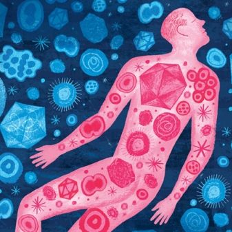 Gut Health and Its Connection to our Whole Being (Part 2)