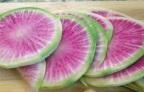 The Beauty of the Watermelon Radish