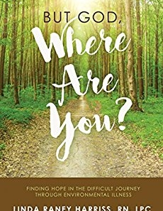 Book Review: But God Where Are You?