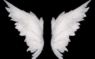 Angel's wings cover us as we heal to experience a transformational life in Christ.