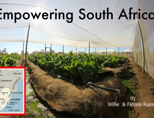 Empowering South Africa