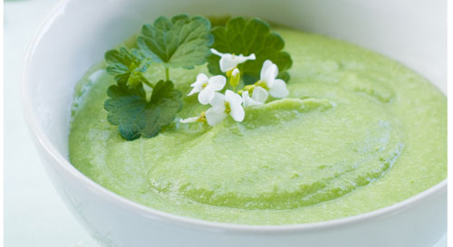 Chilled soup with aspargus