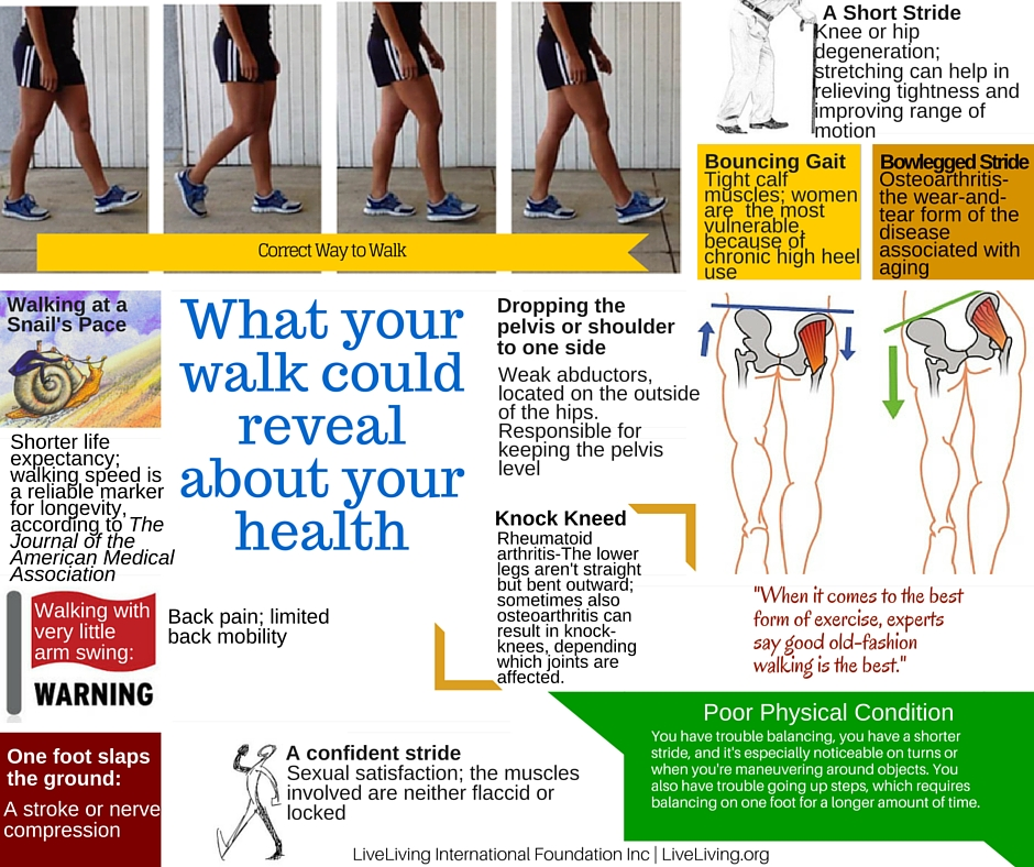 This infographic shows how our walk can reveal information about our health and wellness.