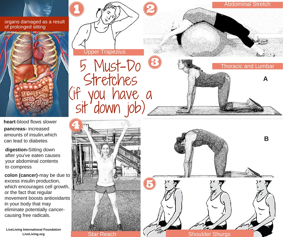 5 Must-Do Stretches if you have a sit down job.
