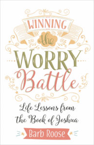 book cover winning the worry battle