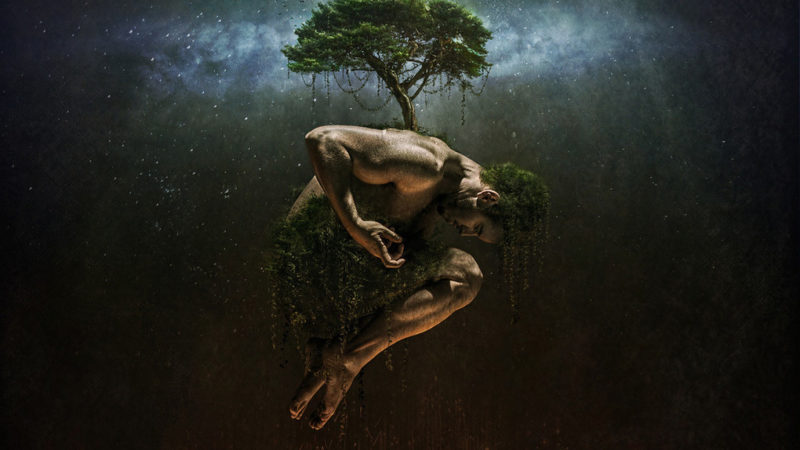 Man and tree of life